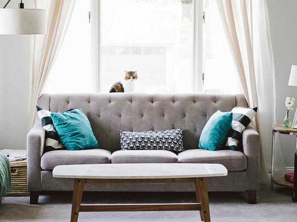 Wurde modernes Wärmedämmglas eingesetzt, darf das Sofa auch gerne direkt am Fenster stehen. Foto: © StockSnap/Pixabay