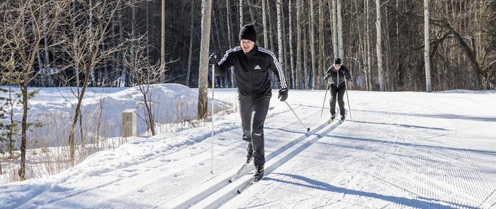 Natur pur genießen, beim Skilanglauf auf den Loipen durch die Wälder der Region. Foto: © Visit Finnland