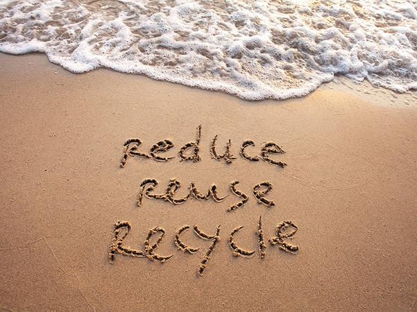Nachhaltigkeit ist auf jeder Ebene ein großes Thema für das Unternehmen aus Oldenburg. Foto: © Adobe Stock / Nova Hüppe