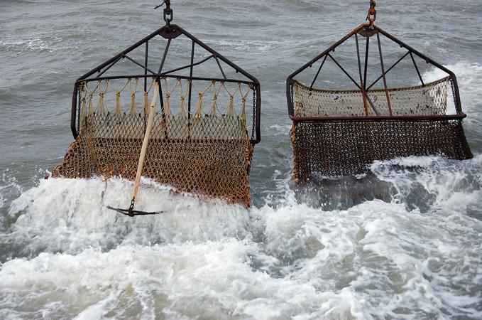 Schleppnetze, die sogenannten Dredgen, werden über den Meeresboden gezogen. In einem befestigten Korb werden die Muscheln gesammelt. Foto: © Kahlke/de Leeuw